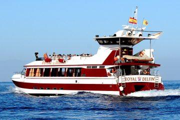Royal Delfin Schiff