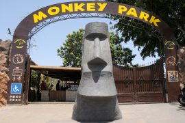 Eingang Monkey Zoo